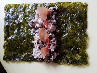 naše jako suši - na plátku nori řasy rýže, čočka a umepasta na ochucení